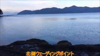琵琶湖 西野放水路 バス釣りポイント トンネル入り口から