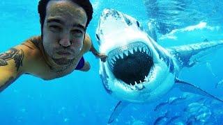 10 Gefährliche Selfies - Die du gesehen haben musst!