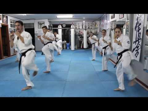 KWF Kyokushinkai Karate Advanced Master Class With Sensei Mauricio Alvarado