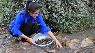 Snail Recipe  Snail Curry Recipe  Spicy Snail cooking by countryside life TV.
