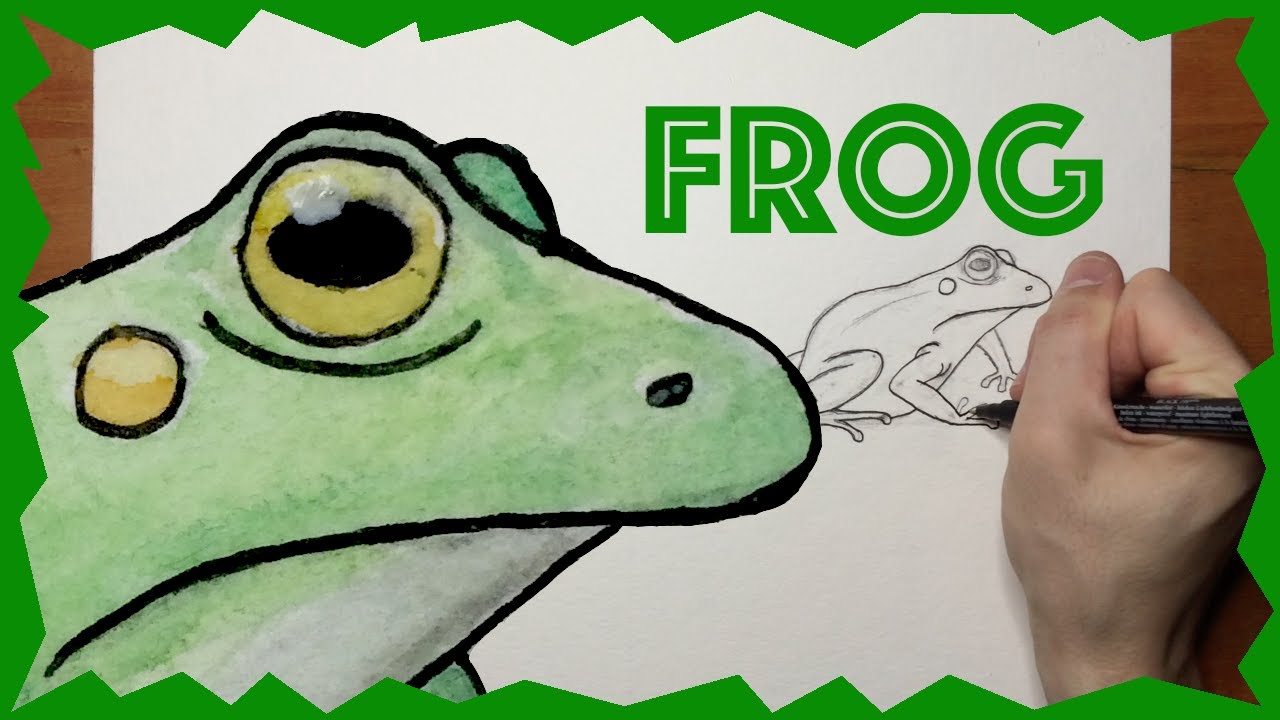 How To Draw A Frog   Drawing For Kids Of All Ages - YouTube