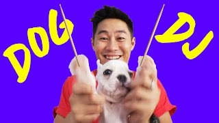YOU WON'T BELIEVE WHAT THIS DOG CAN DO - Hangouts 18 | Eden Ang