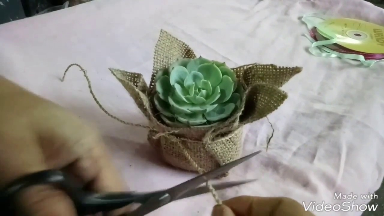 Easy DIY succulent giveaway  YouTube