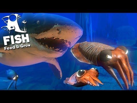 Feed and Grow Fish - Novos Animais Aquáticos, Cuttlefish e Tubarão Tigre! | (#19) (PT-BR)