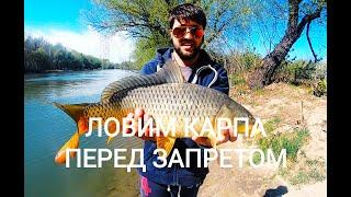 На что мы ловим карпа в апреле перед запретом на р Турунчук с Троицкое