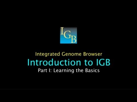 Introduction To IGB: Part I: Learning The Basics