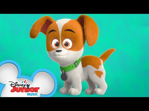 Scuba Doggin Music Video Puppy Dog Pals Disney Junior Youtube