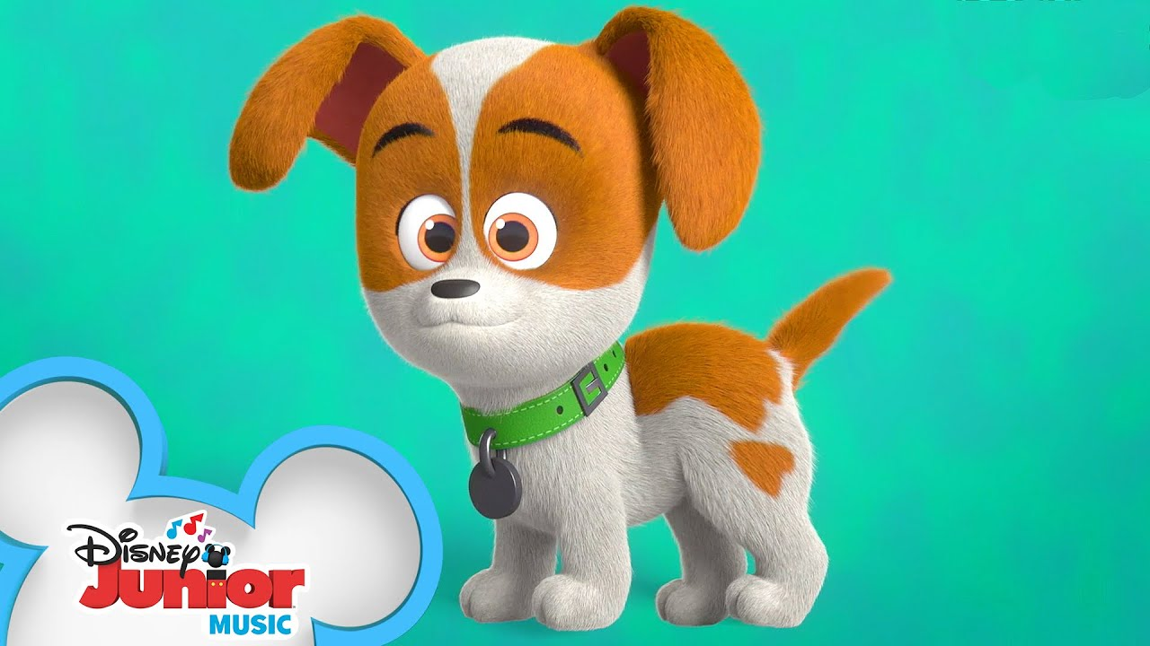 Looking For Cody Music Video Puppy Dog Pals Disney Junior Youtube