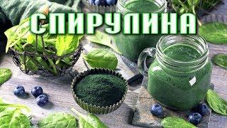 СПИРУЛИНА - супер-продукт для здорового функционирования организма