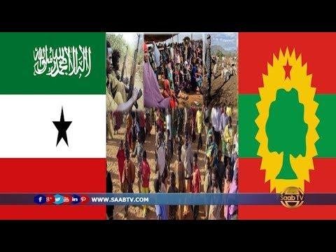 Somaliland iyo Oromia oo Ka Wada Hadlay Dagaaladda Ka Socda Mooyaale.
