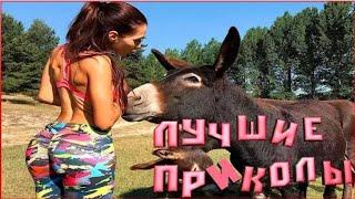 Конечно смешная девушка терпит неудачу компиляции 2019  смешное видео приколы 2019 Свежие