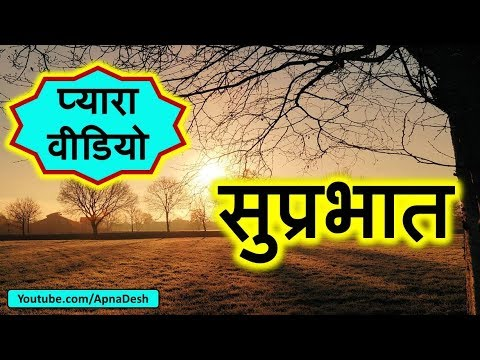 Good Morning Wishes Video, Download, Sms, In Hindi, Wallpaper, Shayari, Thought, Messages