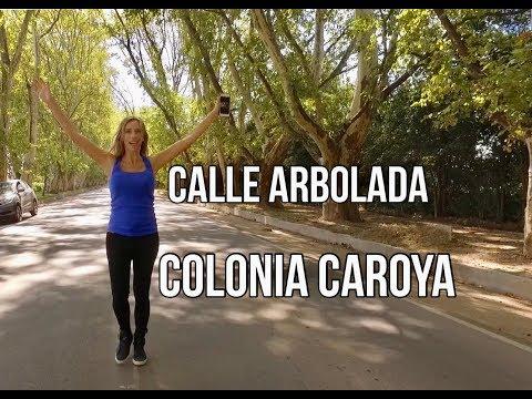 CORDOBA - COLONIA CAROYA - Calle Arbolada