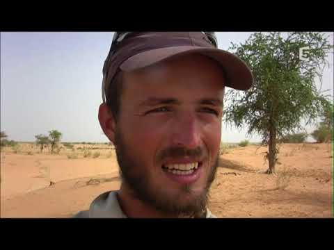 L'aventure africaine, 20 000 km à vélo  Du Niger au Camerou 3