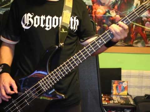 Inspiral Carpets I Want You Bass Guitar Cover Youtube