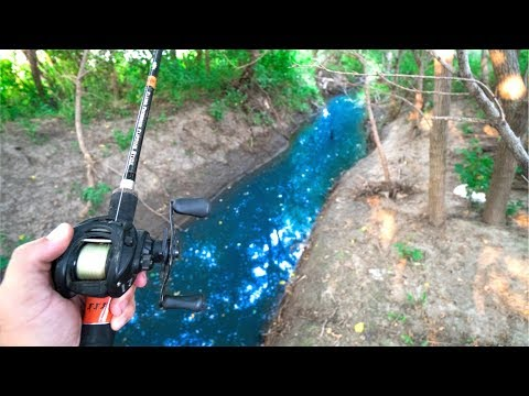 Fishing TINY HIDDEN Creek!!! (Found BIG Bass)