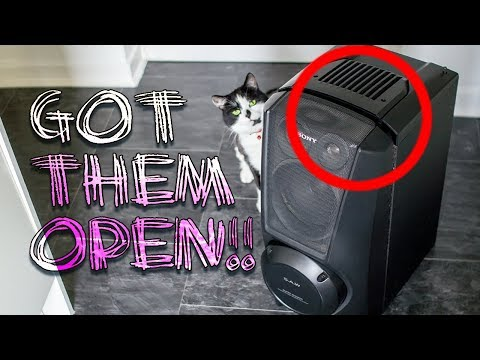 SONY Super Woofers OPENED !!! (Pt.1)