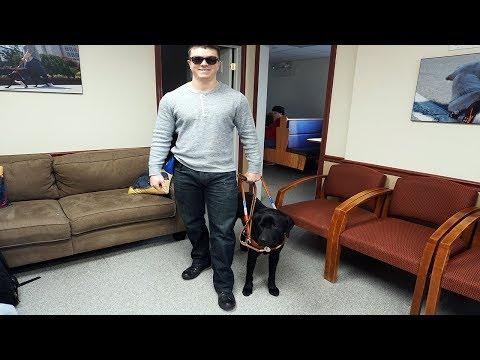 Meet Diesel My Guide Dog