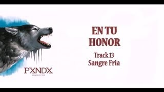 Watch Panda En Tu Honor video