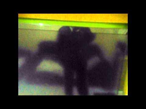 TRANSFORMA AZBOX BRAVISSIMO TWIN CLONE EM MEGABOX 3000 - YouTube