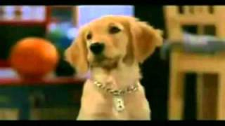 Air Buddies 2006   Trailer