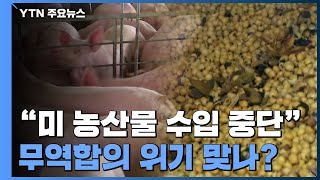 """""""中, 미국산 콩·돼지고기 수입 중단""""...무역합의 위…"""