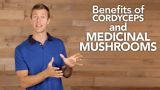 Benefits of Cordyceps and Medicinal Mushrooms