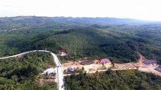 Новую столицу Индонезии построят среди джунглей
