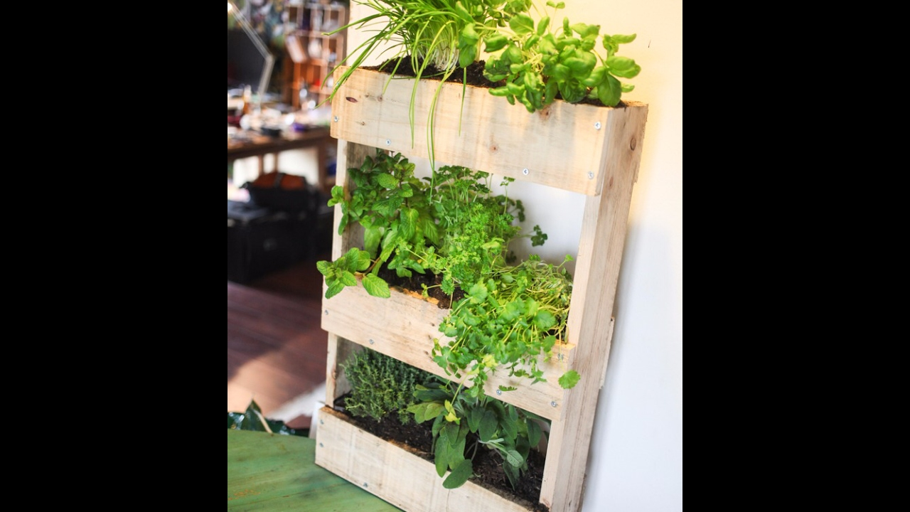 Comment r aliser un mur v g tal ou aromatique int rieur en bois youtube - Jardin aromatique d interieur ...