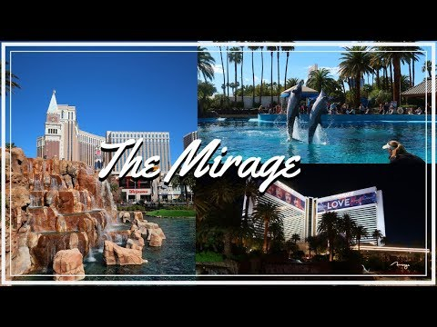 The Mirage Las Vegas 2019 | Room Tour, Volcano Show, Dolphin & Secret Garden Exhibit