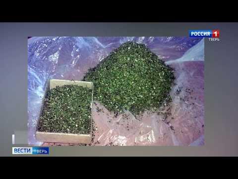 Происшествия в Тверской области сегодня   7 мая   Видео