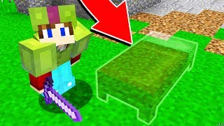 THE INVISIBLE MINECRAFT BED TROLL! (Bed Wars TROLL)