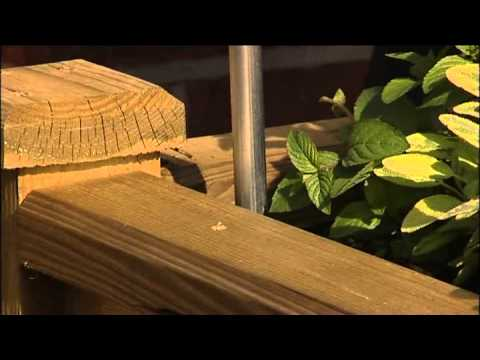 Building A Raised Flower Bed Table Or Timber Raised Vegetable Gardens - YouTube