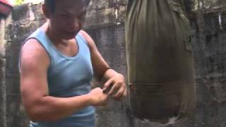 Kung Fu Hand Power Training  3