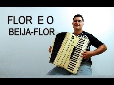 Flor e o Beija-Flor - Acordeon - Henrique e Juliano - Solo - Vídeo Aula