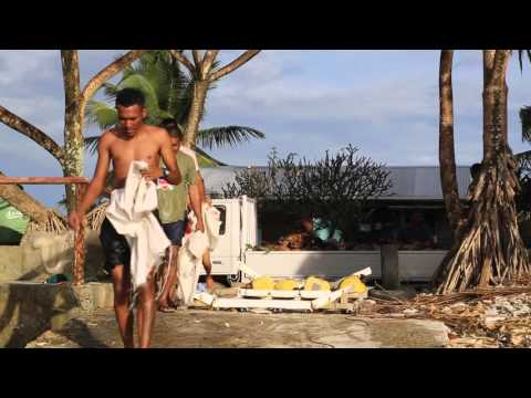Tuvalu Funafuti Ramasseurs de noix de coco / Tuvalu Funafuti Coconut pickers