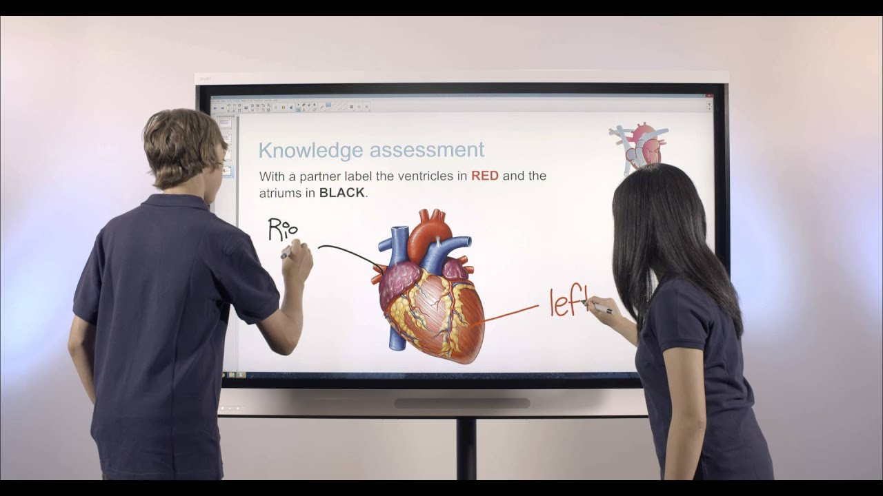 SMART Board 6065 interactive flat panel - YouTube