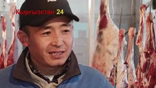 Бизнес башта эт бизнеси #Кыргызстан 24 1