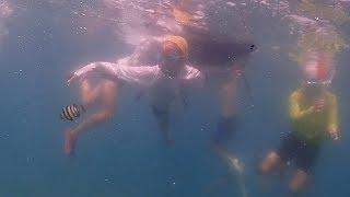 地元の海を満喫、小学生がシュノーケリング体験 静岡・沼津 thumbnail