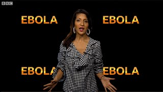 Where did Ebola come from? - BBC What's New?
