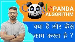 Google panda 2019 | Rules of Google algorithm | Ultimate guide of the Panda Update |
