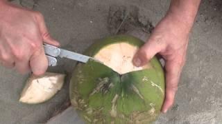Как не умереть от жажды около экватора, или  пьем кокосовый орех