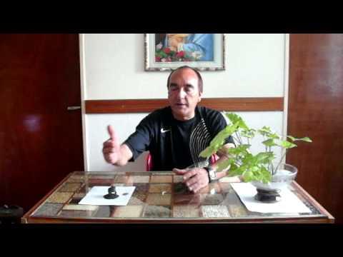 Rana de tres patas youtube - Rana de tres patas feng shui ...