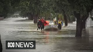 Baixar Townsville gets a year's worth of rain in a week | ABC News