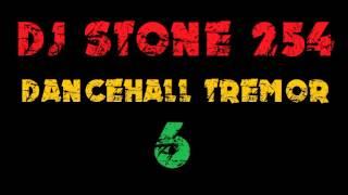 DJ STONE 254 - DANCEHALL TREMOR 6