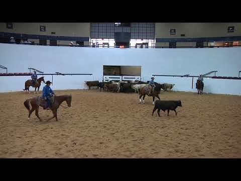 Miss April Snap & Sarah Armenta | SRCHA Wild Rag Cattle Classic - Youth VRH Ranch Cutting