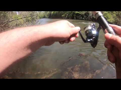 Fishing Expediton Toccoa River