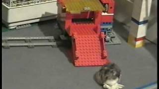 Smart hamster takes Lego Train Express!