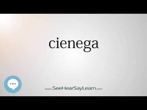 cienega - Smart & Obscure English Words Defined 🗣🔊