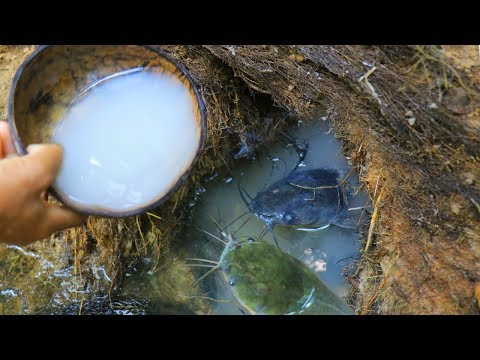 New Method Fishing - Traditional Fishing With Tree Resin Catching Fish From Deep Hole